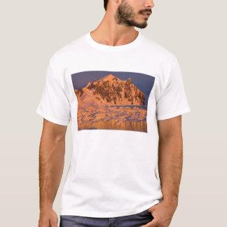 に沿う凍結する氷山の景色 Tシャツ