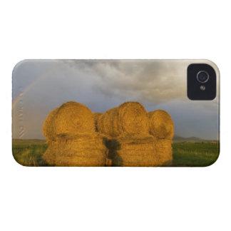 に沿う干し草ベール上のBriiliantの虹 Case-Mate iPhone 4 ケース