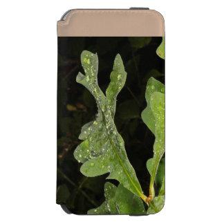 ぬれたカシの葉 INCIPIO WATSON™ iPhone 5 財布型ケース
