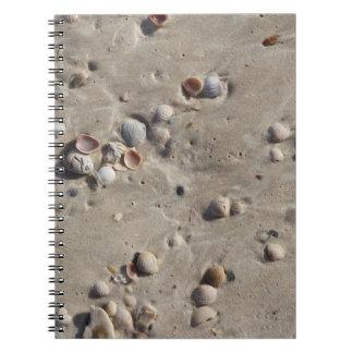 ぬれた砂の貝殻 ノートブック
