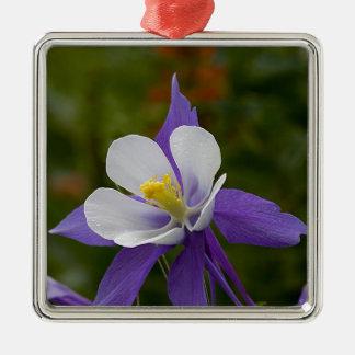 ぬれた紫色のオダマキ(植物) メタルオーナメント
