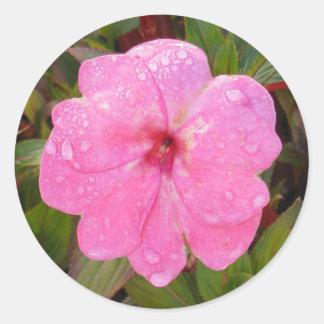 ぬれた花のステッカー ラウンドシール