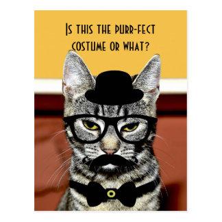 のどを鳴らす音fect猫の衣裳 ポストカード