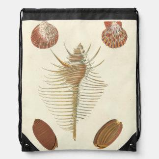 の5親切な貝殻 ナップサック