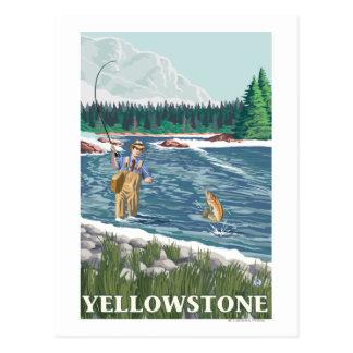 はえの漁師-イエローストーン国立公園 ポストカード