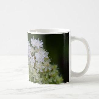 はえ毒白い野生の花の花のマグのコップ コーヒーマグカップ