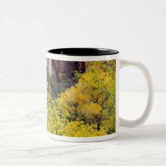 はかない滝は崖のスロットから注ぎます ツートーンマグカップ