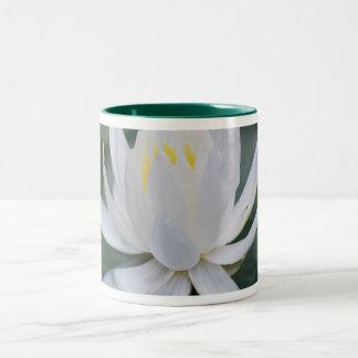 はすか《植物》スイレンおよび意味 ツートーンマグカップ