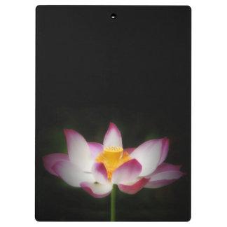 はすの花の写真撮影の素晴らしいヨガOmのギフト! クリップボード
