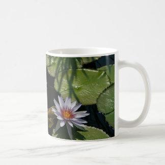 はす《植物》スイレンのマグ コーヒーマグカップ