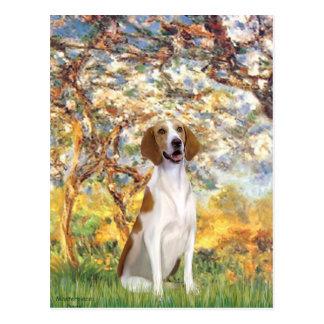 ばねのアメリカFoxhound ポストカード