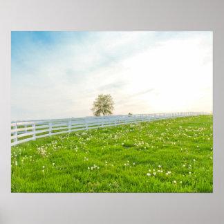 ばねの美しい田舎景色 ポスター