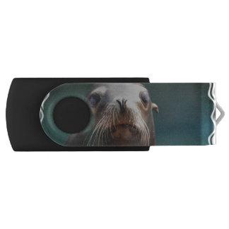 ひげを搭載するアシカ USBフラッシュドライブ