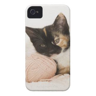 ひもの球に置いている子ネコ Case-Mate iPhone 4 ケース