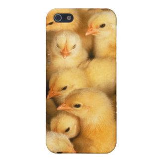 ひよこのベビーの鶏 iPhone 5 カバー