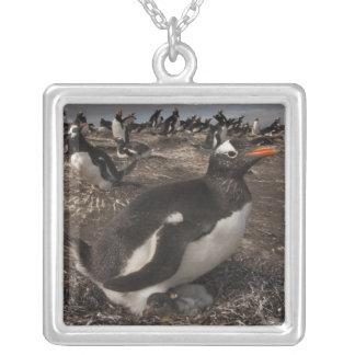 ひよこを持つGentooのペンギン(Pygoscelisパプア) シルバープレートネックレス