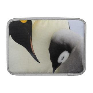 ひよこを見ているコウテイペンギン MacBook スリーブ