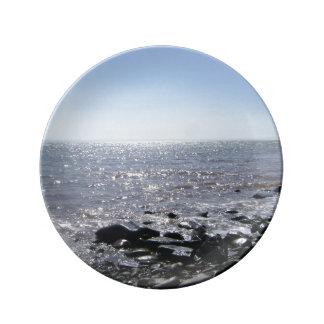 """""""ぴかぴか光ることは""""装飾的なプレートファンデー湾に水をまきます 磁器プレート"""