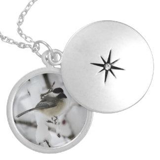 ふくよかな《鳥》アメリカゴガラのネックレス シルバープレートネックレス