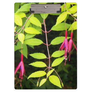 ぶら下がったなピンクの赤紫の花柄 クリップボード