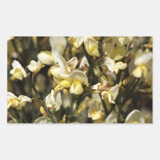 ほうきの花 長方形シール