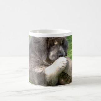 ほうきを持つチベタン・マスティフの子犬 コーヒーマグカップ