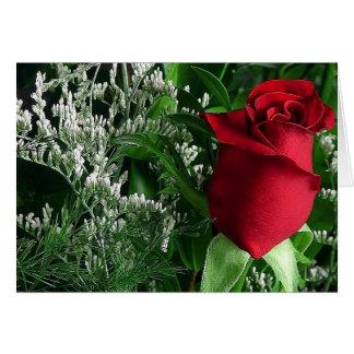 ほとんどの美しいバラのつぼみ カード