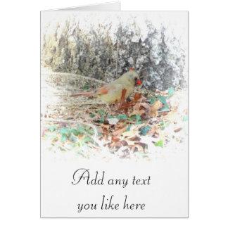 ほとんど春の(鳥)ショウジョウコウカンチョウカード カード