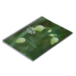 ぼうこうCampionのかわいらしく白い野生の花のノート ノートブック