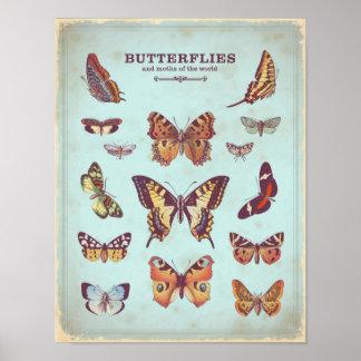 ぼろぼろのシックなターコイズの蝶ポスター ポスター