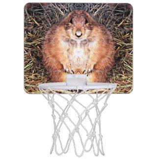 ぽっちゃりしたホリネズミの小型バスケットボールたが ミニバスケットボールゴール