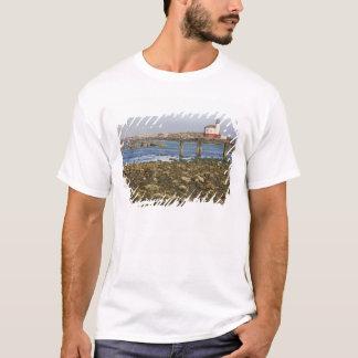 または、オレゴンの海岸、BandonのCoquilleの川 Tシャツ