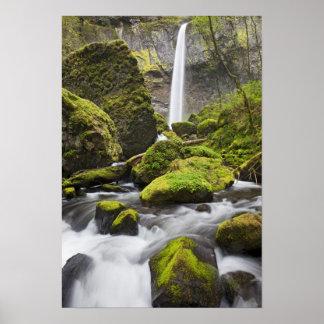 または、コロンビア川の峡谷、Elowahの滝 ポスター