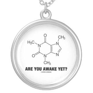 まだ目がさめていますか。 (カフェインの分子) シルバープレートネックレス