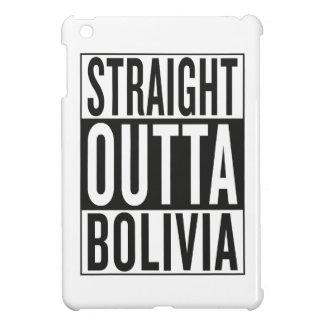まっすぐなouttaボリビア iPad miniカバー