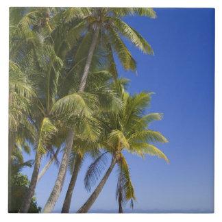 やしによって並べられるビーチのクック諸島3 タイル