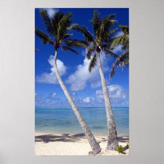 やしによって並べられるビーチのクック諸島 ポスター