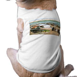 やしの島、チャールストン、サウスカロライナ ペット服