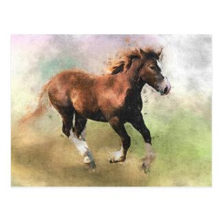 ゆっくりと駆けていく子馬の郵便はがき ポストカード