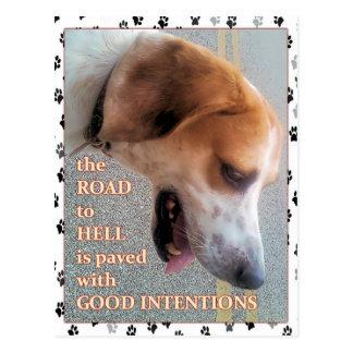 よい意思犬 ポストカード