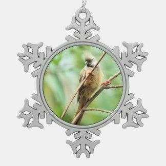 よくはしゃぐで愛らしくかわいいブラウン斑入りのMousebird スノーフレークピューターオーナメント