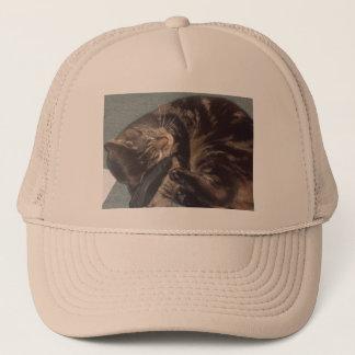 よくはしゃぐなデーブのトラック運転手の帽子 キャップ