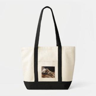 よくはしゃぐな子猫のキャンバスのバッグ トートバッグ
