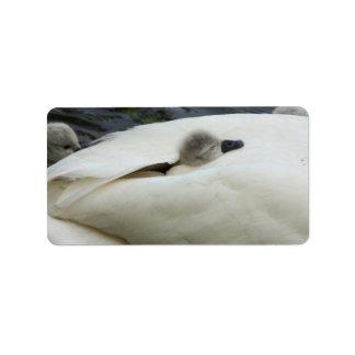 よの睡眠、小さい白鳥 ラベル