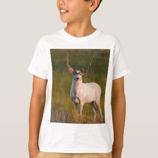 より柔和で白い木びき台2 Tシャツ
