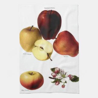 りんごのふきん キッチンタオル
