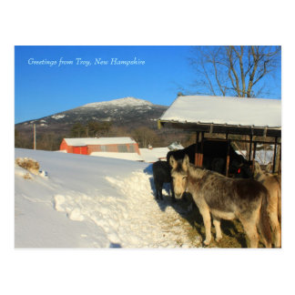 ろばおよび山MonadnockのTroからの挨拶… ポストカード