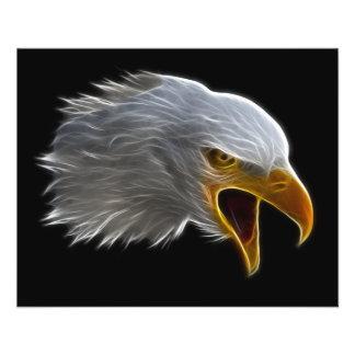 わめくアメリカの白頭鷲の頭部 チラシ