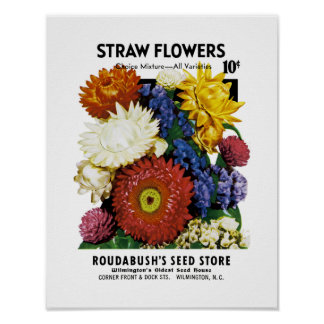 わらの花の種の包みのラベル ポスター
