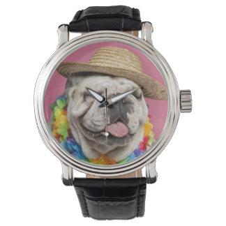 わらを身に着けている英国のブルドッグ(18か月古い) 腕時計